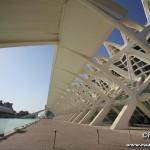 Parco oceanografico - Valencia