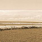 Veduta del porto di Trani